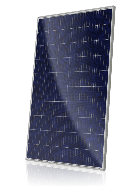 Canadian Solar 275 watt Poly panel